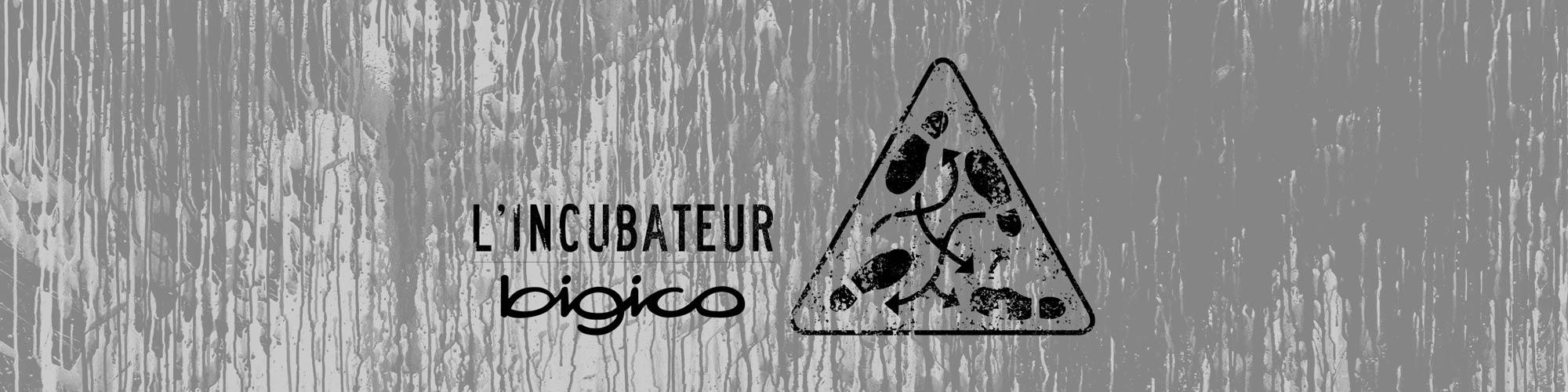 slide-incubateur-classique-couli2